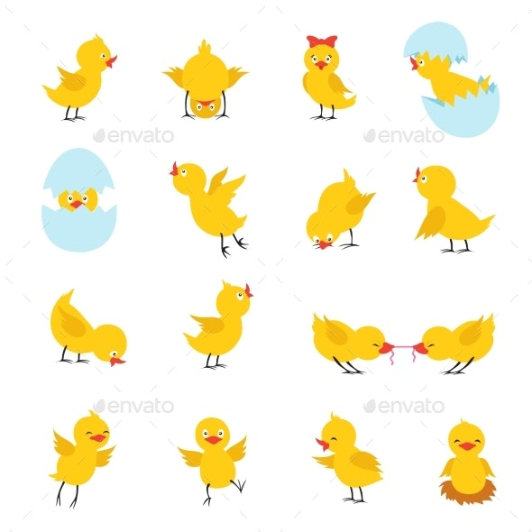 Chicks Cartoon Easter Baby Chickens - Animals Characters