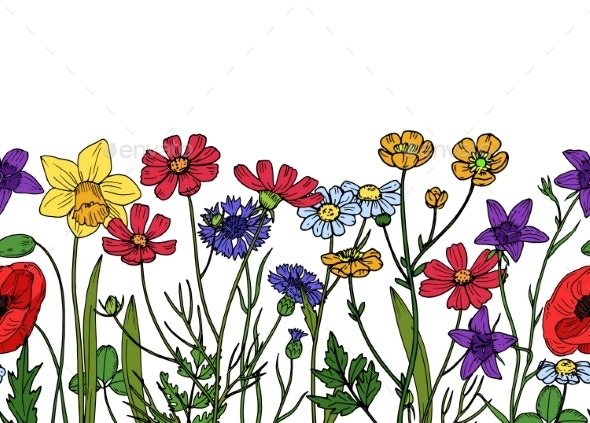 Wild Flowers Seamless Border - Flowers & Plants Nature