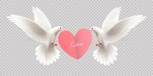 White Pigeons Holding Heart - Animals Characters