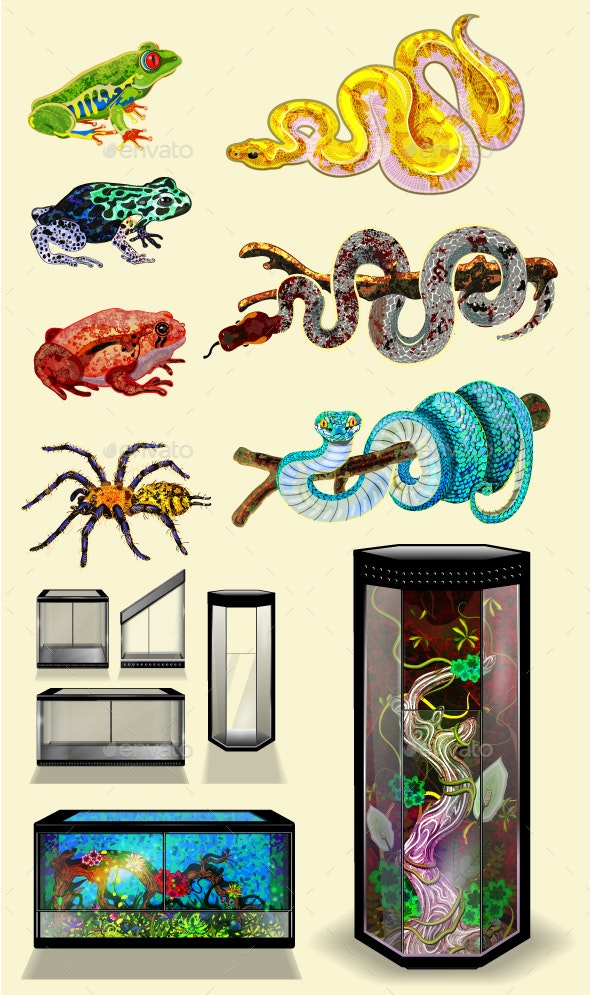 Exotic Pets - Animals Characters