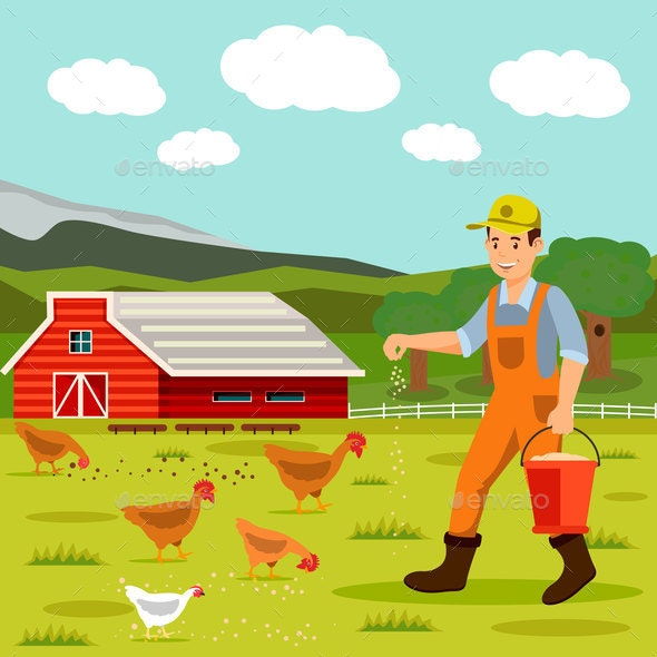 Male Farmer Feeding Chickens Vector Illustration - Animals Characters