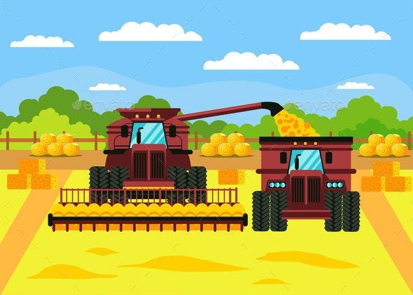 Grain Crop Harvest Flat Vector Illustration - Industries Business