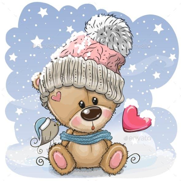 Teddy Bear Sits on Snow