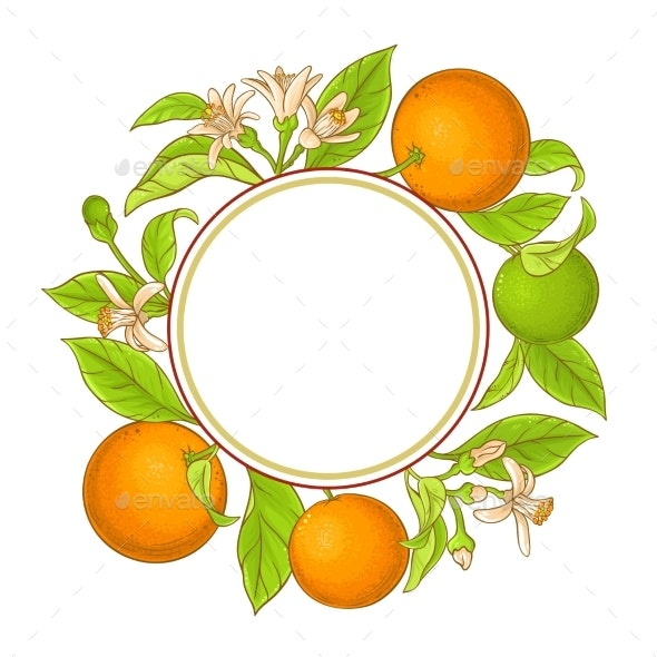 Orange Branch Vector Frame - Food Objects