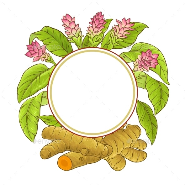 Turmeric Plant Vector Frame - Food Objects