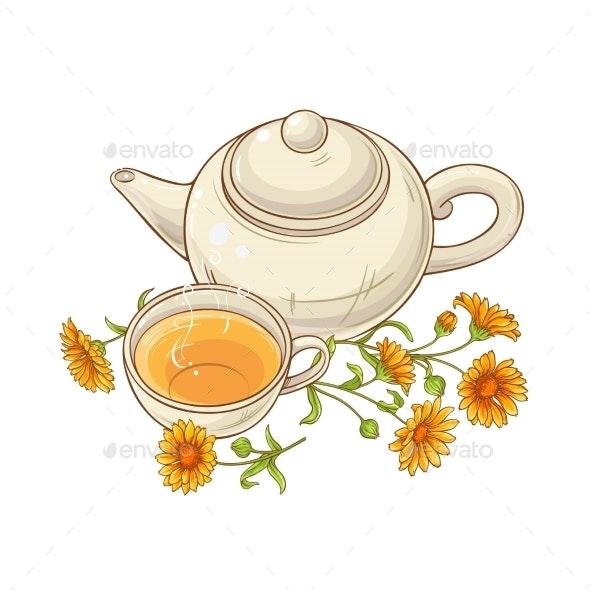 Calendula Tea Vector Illustration - Food Objects
