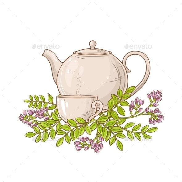 Astragalus Tea in Teapot - Health/Medicine Conceptual