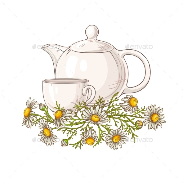 Chamomile Tea Illustration - Food Objects