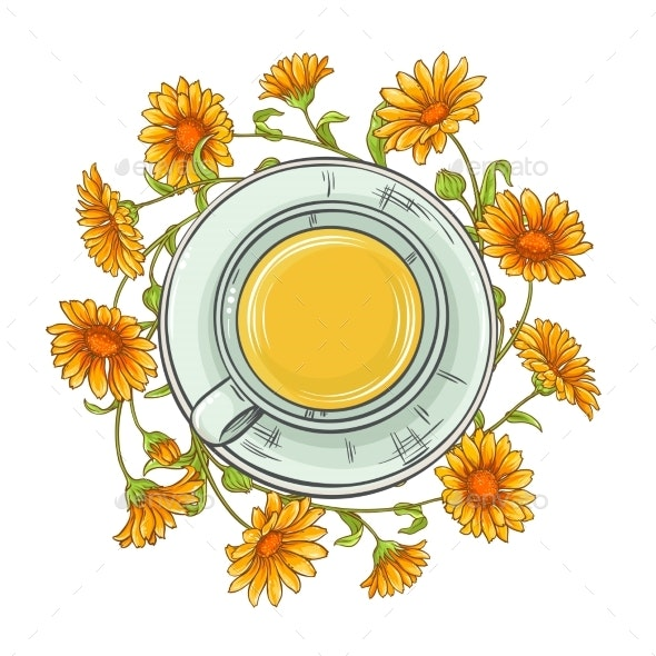 Calendula Tea Illustration - Health/Medicine Conceptual