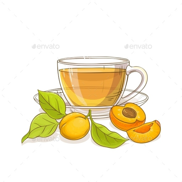 Apricot Tea Illustration - Food Objects