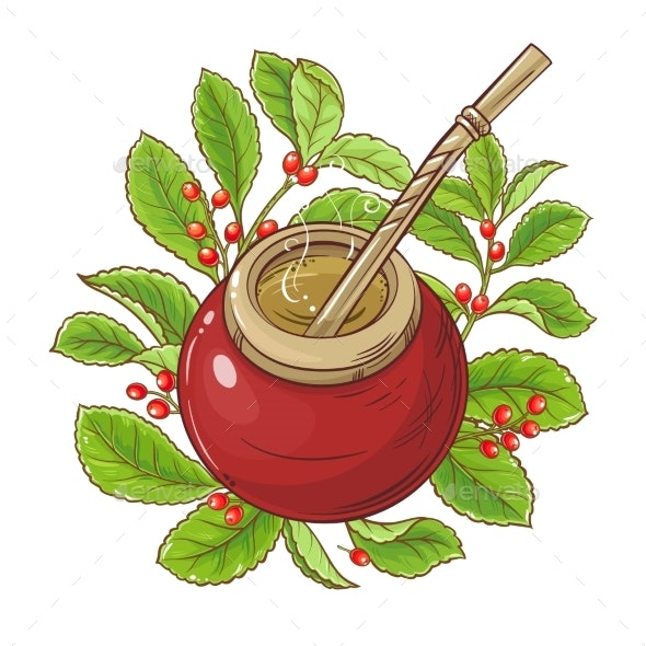 Mate Tea Vector Illustration - Food Objects