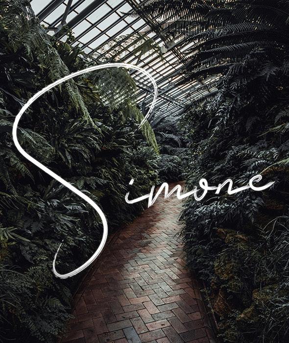 Simone - Script Fonts