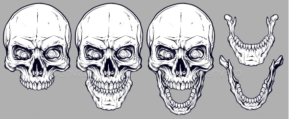 Detailed Graphic White Human Skulls and Jaws Set - Miscellaneous Vectors