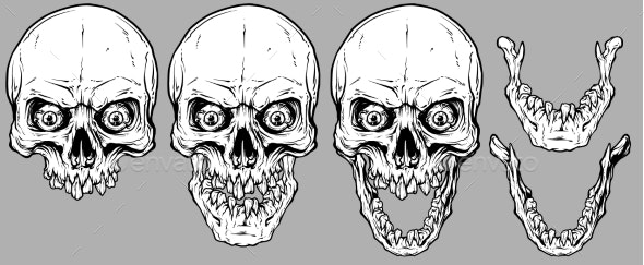 Detailed Graphic Human Skulls and Jaws Set - Miscellaneous Vectors