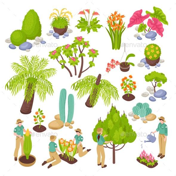 Botanical Garden Constructor Set - Miscellaneous Vectors