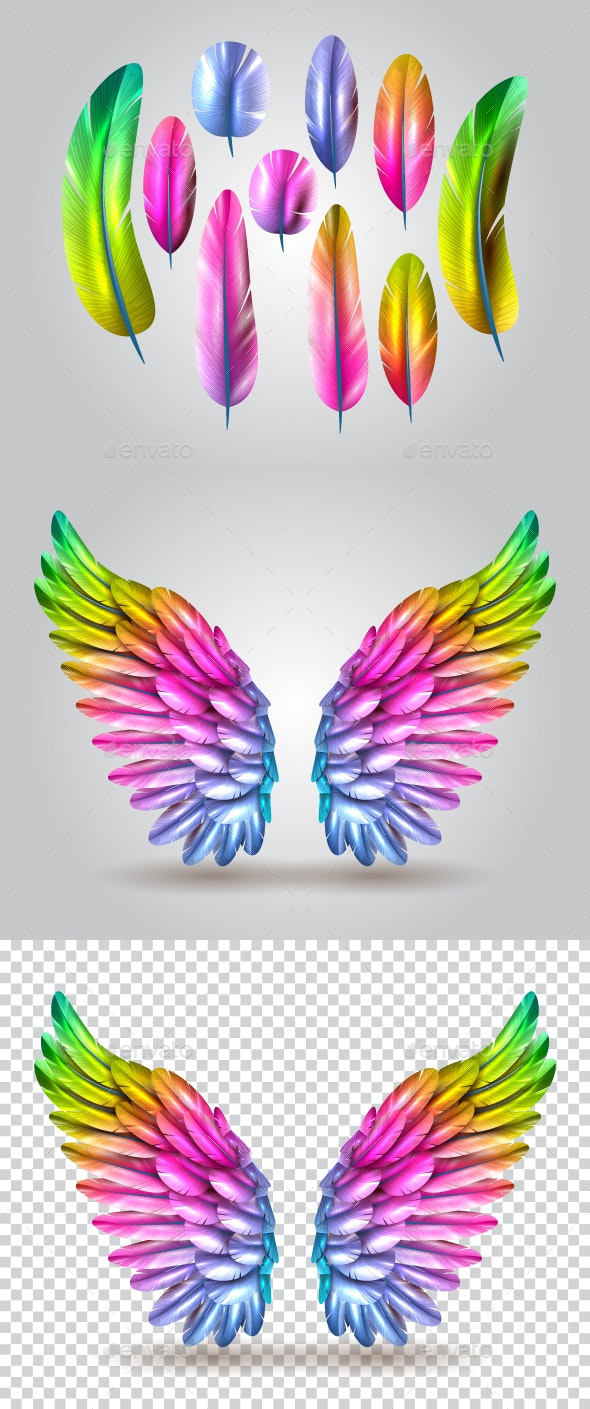 Wings - Miscellaneous Vectors