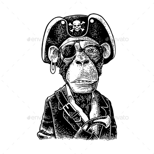 Monkey Pirate with Gun Dressed in a Cocked Hat - Animals Characters