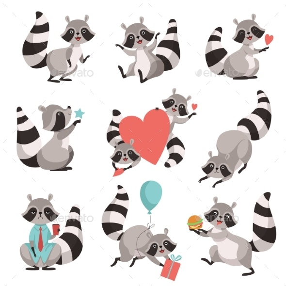 Raccoon Set - Animals Characters