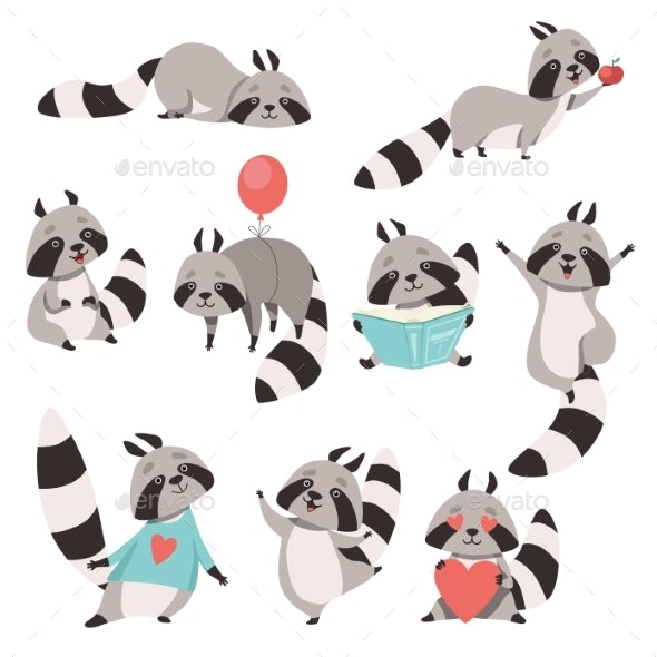 Collection of Raccoon Animal Cartoons - Animals Characters