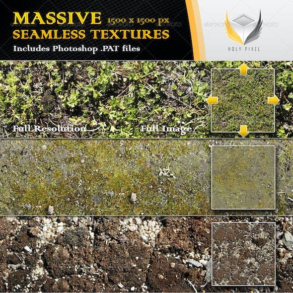 6 Seamless Moss Textures