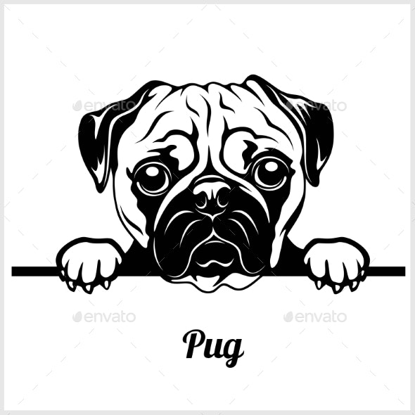 Pug Peeking Dog Face - Animals Characters