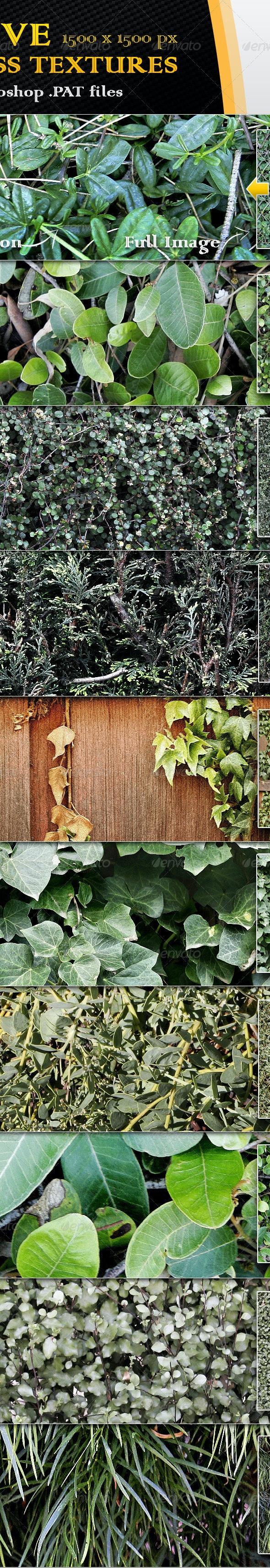 10 Seamless Plant and Hedge Textures - Nature Textures / Fills / Patterns