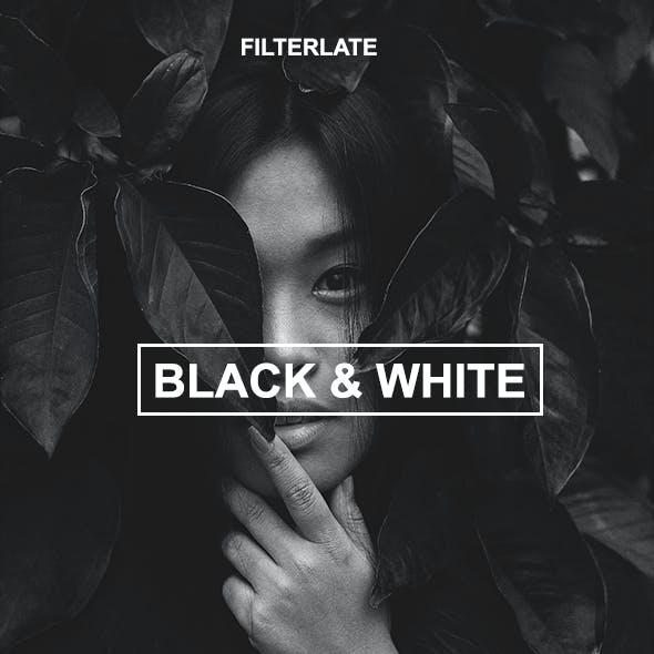 Black & White Actions