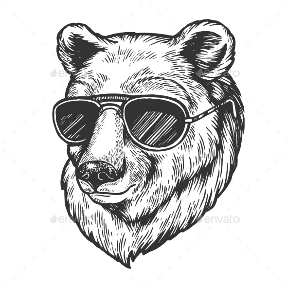 Bear Animal in Sunglasses Sketch Engraving Vector - Animals Characters