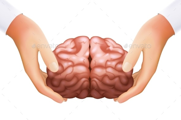 Science Concept Hands Holding Human Brain Mind - Miscellaneous Vectors