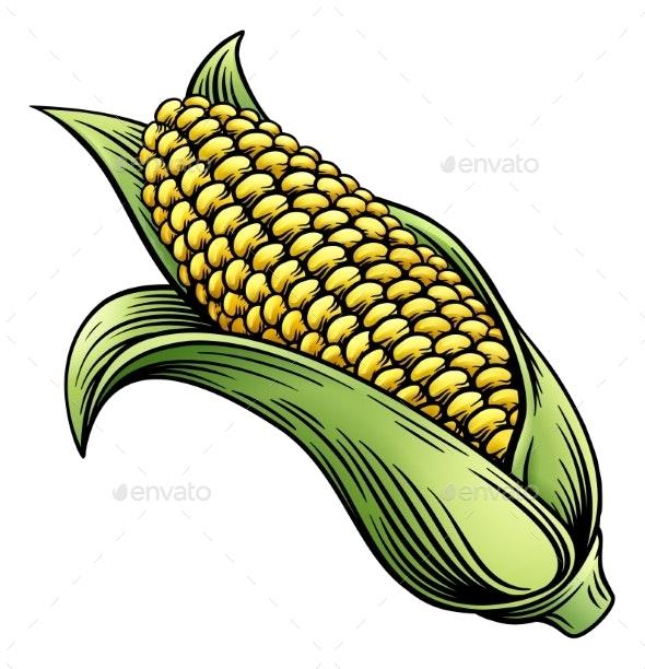 Sweet Corn Ear Maize Woodcut Etching Illustration - Food Objects