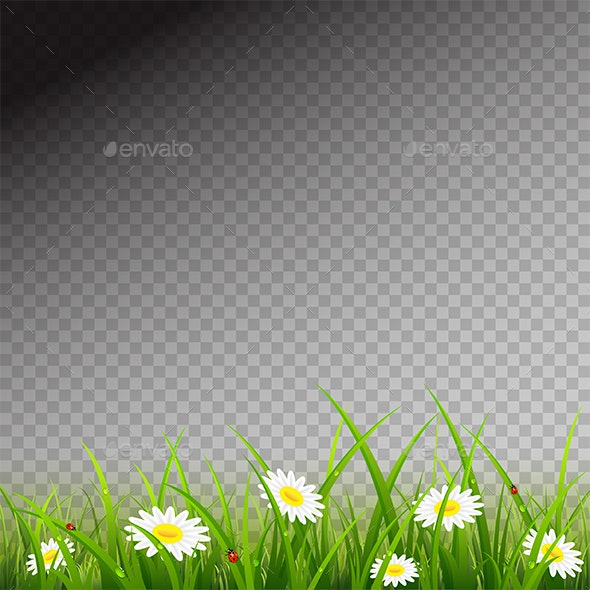 Green Grass with Flowers on Transparent Background - Flowers & Plants Nature