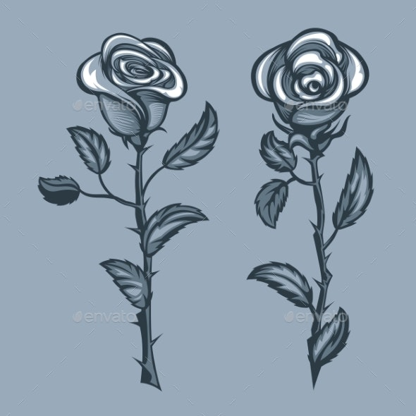Two Roses with Thorns Monochrome Tattoo Style - Flowers & Plants Nature