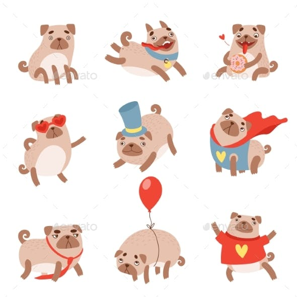 Pug Dog Set