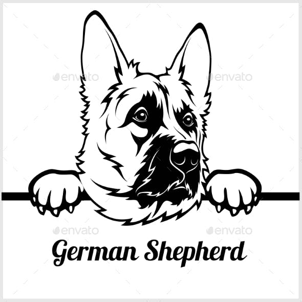 German Shepherd Face