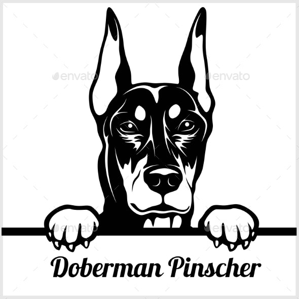 Doberman Pinscher Face - Animals Characters