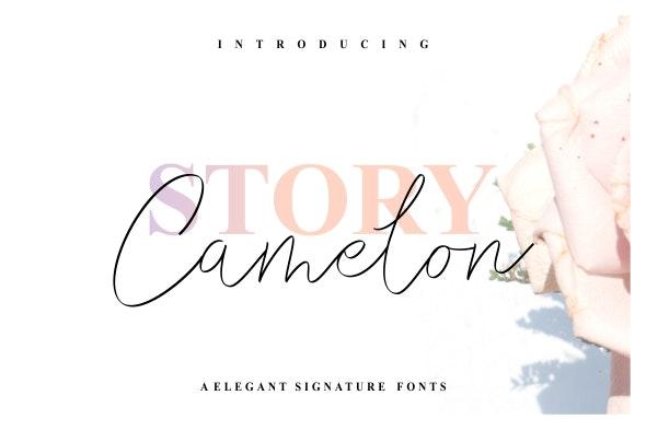 Story Camelon - Hand-writing Script