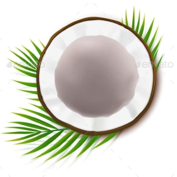 Half Coconut with Green Palm Leaves