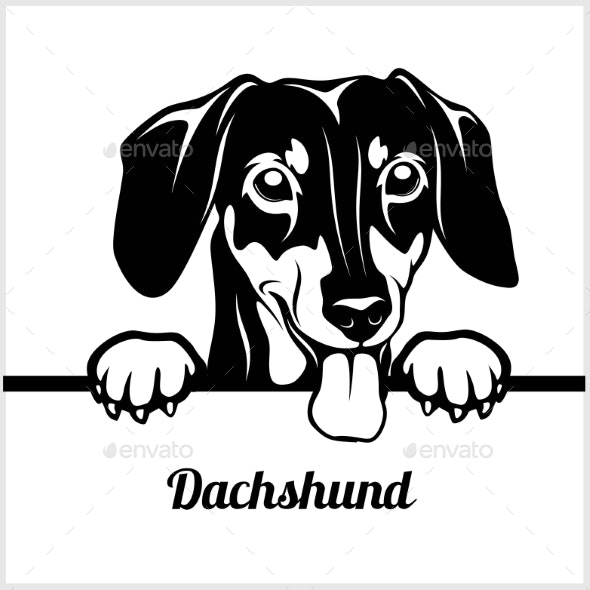 Dachshund Peeking Face - Animals Characters