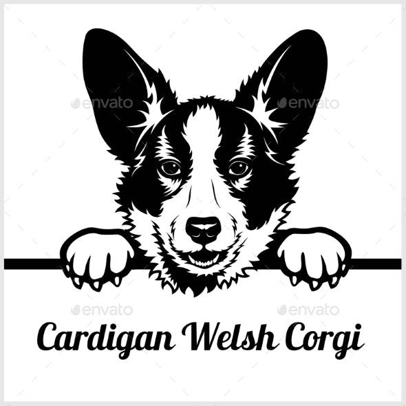 Cardigan Welsh Corgi Peeking Face - Animals Characters