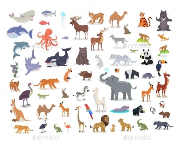 Set of World Animal Species Cartoon Vectors - Animals Characters