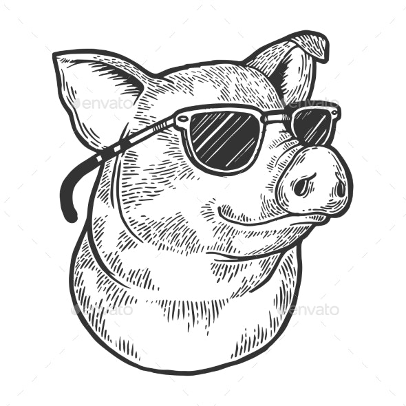 Pig Animal in Sunglasses Sketch Engraving Vector - Miscellaneous Vectors