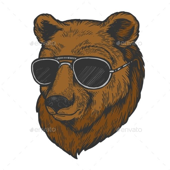 Bear Animal in Sunglasses Color Sketch Engraving