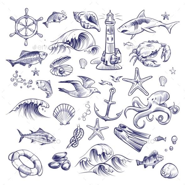 Hand Drawn Marine Set - Animals Characters