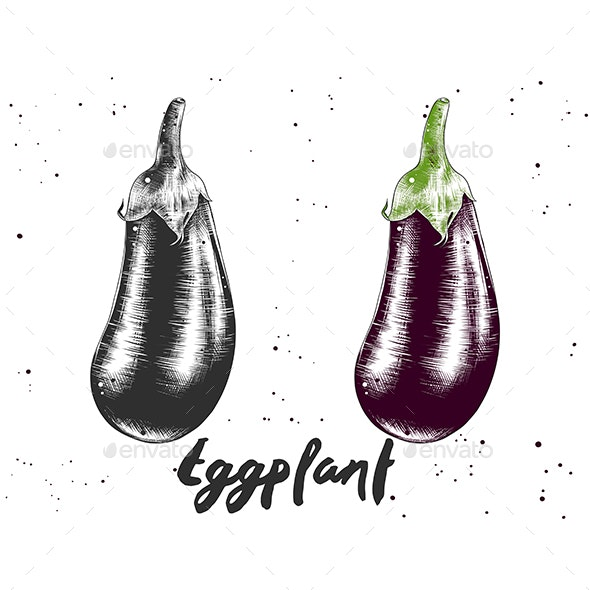 Hand Drawn Sketch Of Eggplant - Food Objects