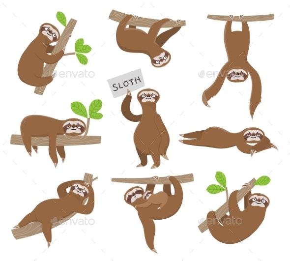 Sloth - Animals Characters