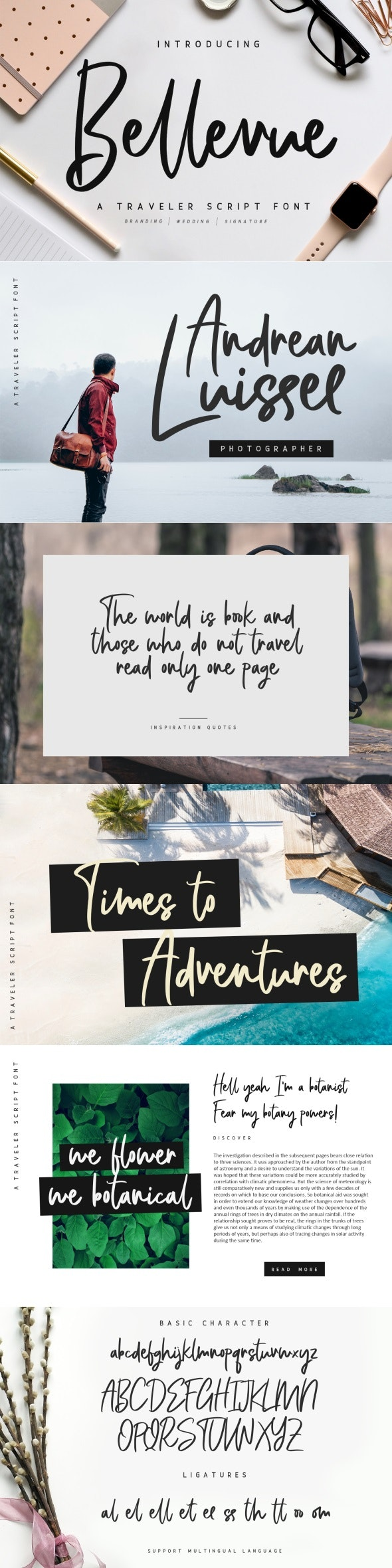 Bellevue // A Traveler Script Font - Hand-writing Script