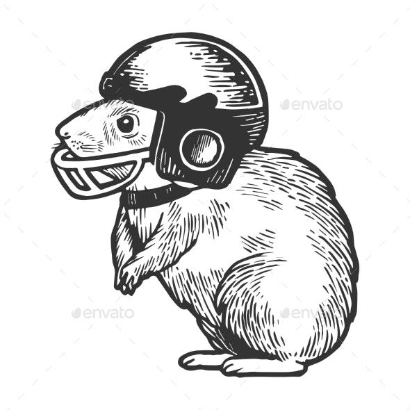 Hamster in Football Helmet Engraving Vector - Miscellaneous Vectors