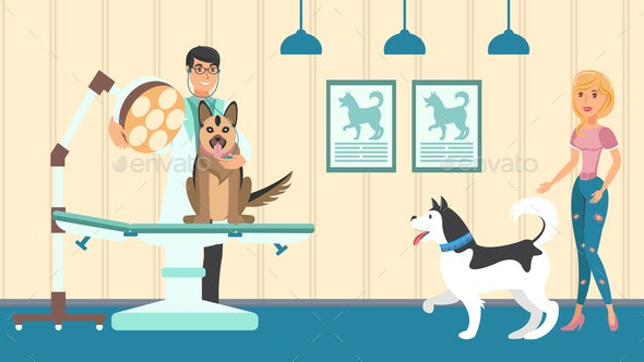 Veterinary Appointment Vector Flat Illustration - Animals Characters