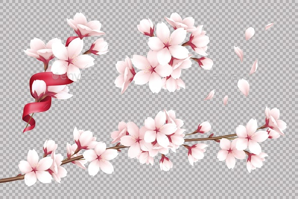 Cherry Flowers Background - Flowers & Plants Nature
