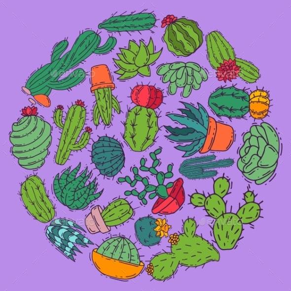 Succulents Decorative Cacti Green Plants Vector - Flowers & Plants Nature